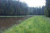 Po odbahnění - rybník v chobotu