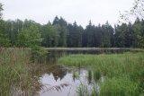 Po odbahnění - nátok do rybníka