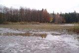 Před odbahněním - rybník